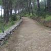 Strada di accesso al castello dell'Acquafredda