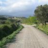 Strada Gesturi