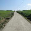 Strada Gesico
